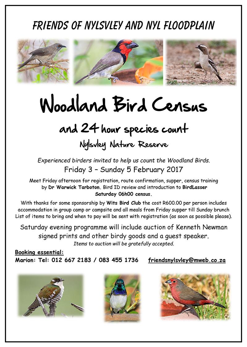 nylsvley-woodland-bird-census-3-5-feb-2017