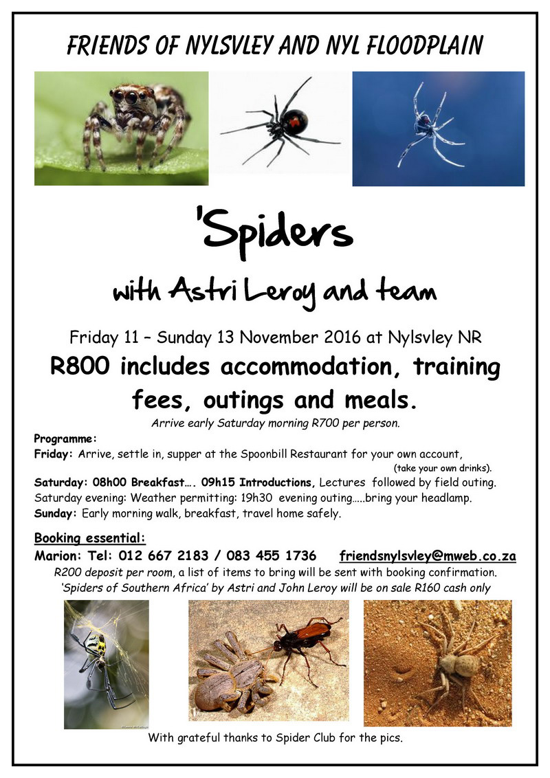 spider-course-poster